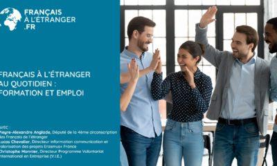 Français à l'étranger au quotidien: la formation et l'emploi