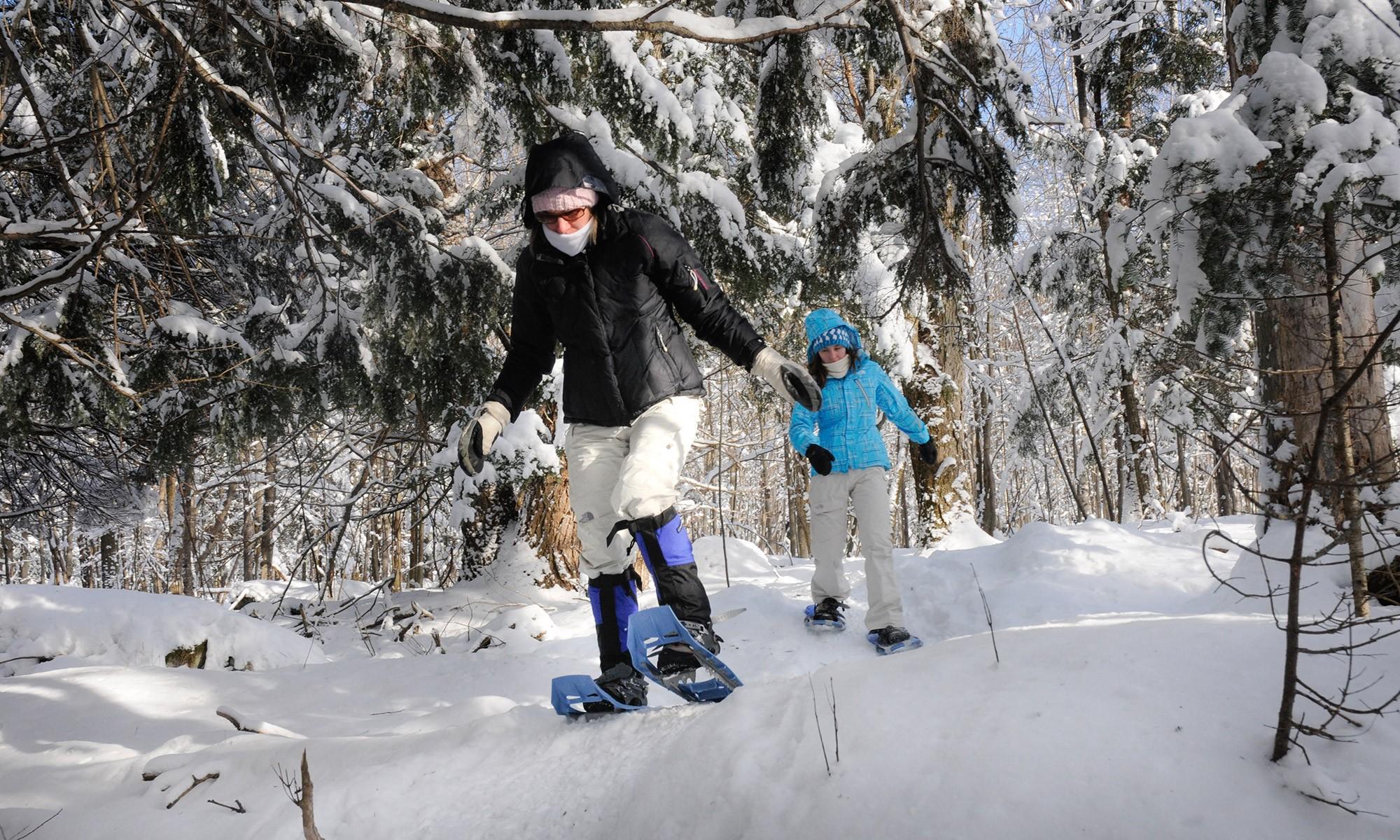 À proximité de la ville, vous pourrez pratiquer le ski alpin et aurez accès à maintes autres activités selon les saisons, telles que le vélo de montagne ou la descente de glissades d'eau.