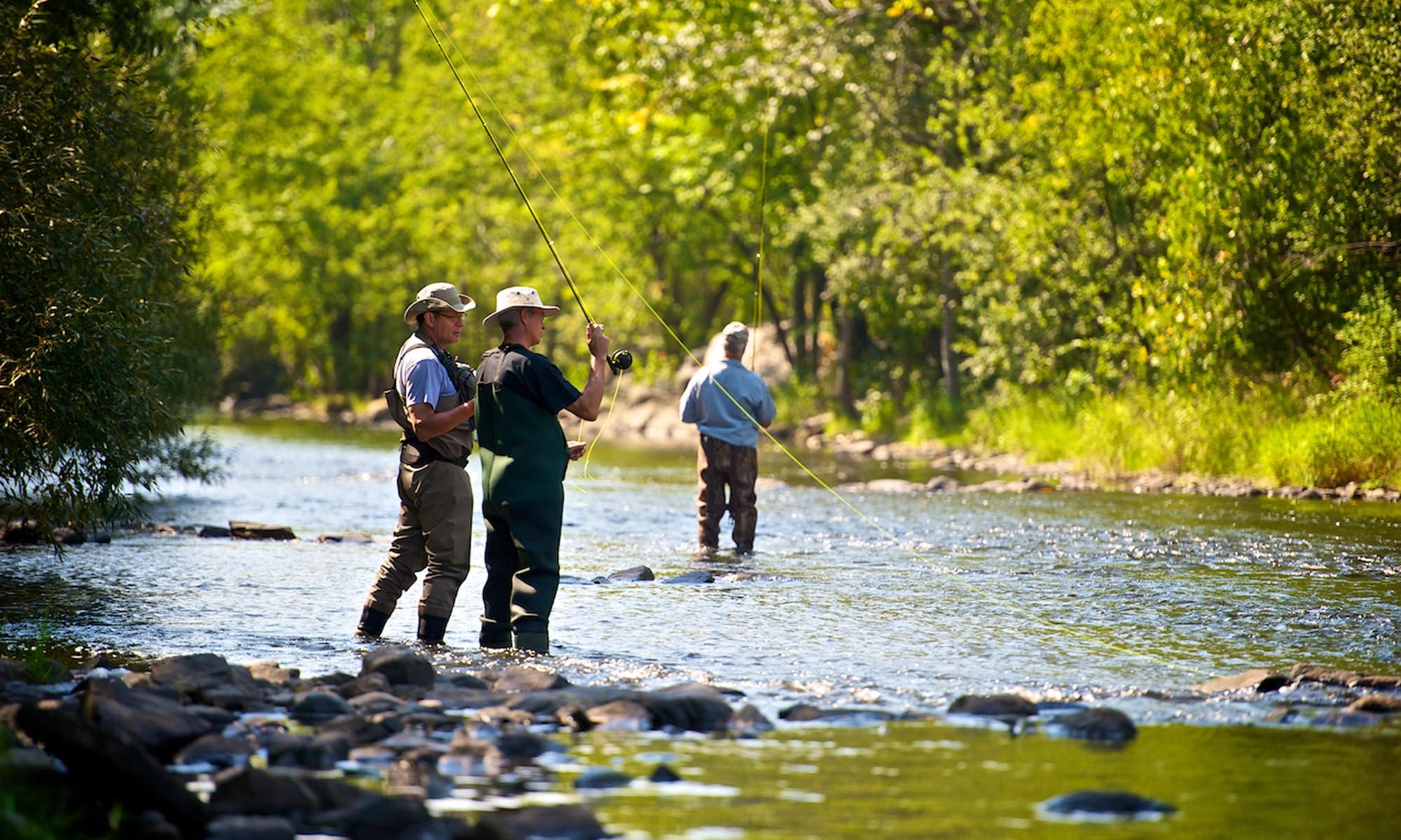 Vous pourrez aussi vous adonner à la pêche à la mouche dans la rivière Yamaska qui traverse la ville.