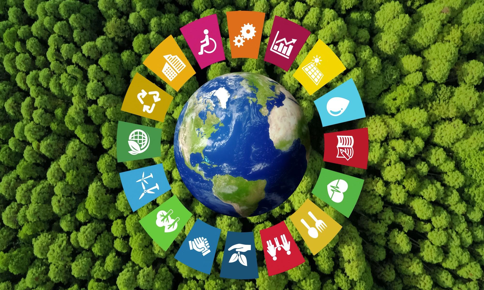 Label E3D: un pas supplémentaire vers l'éducation au développement durable