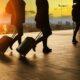 Canada, Nouvelle-Zélande, Australie, Corée du Sud : quels changements pour les PVT cette semaine?